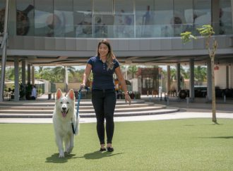 Tendencia Pet Friendly aumenta su auge en Panamá